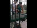 Александр Логинов и Арина Волкова июль 2018