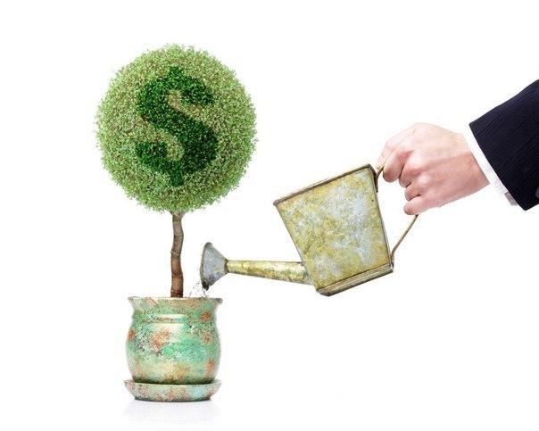 Курсы валют в банках перми
