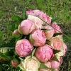 Свадебный букет, декор, флорист