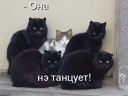 Давайте включим радио Вельвет www.radio-velvet.ru