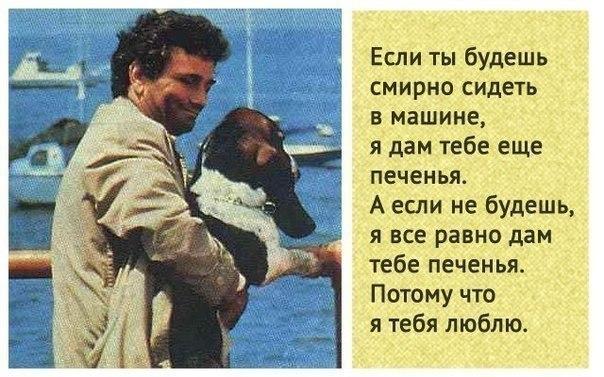 сериал про девушку и парня шпионов россия