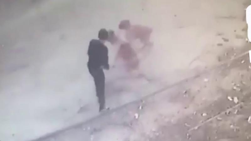 Житель Дагестана устроил титульный бой с дворовыми собаками