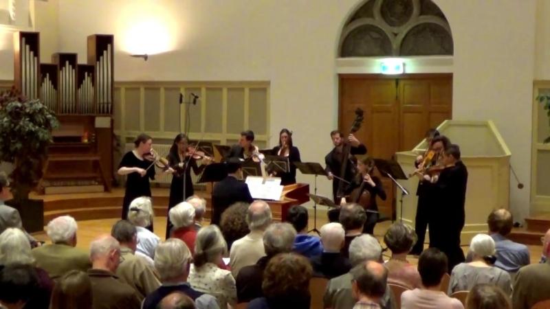 Johann Adolf Hasse - Symphony op. 5 no. 6 - Collegium Musicum Den Haag [Claudio Ribeiro]