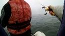 Осенний жор щуки как это бывает Большая вода Рыбалка в тумане с лодки