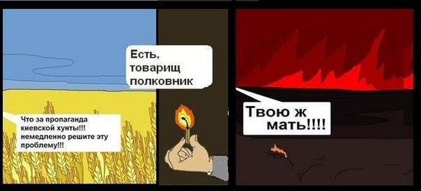Площадь пожаров в Забайкалье выросла до 45 тыс. гектаров - Цензор.НЕТ 7776