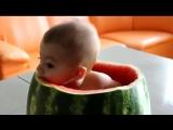 Ребенок ест арбуз.mp4
