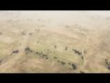 Я играю на скилле - Музыкальный клип от REEBAZ World of Tanks