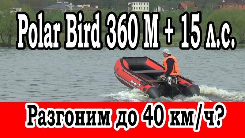 Лодка Polar Bird 360 M, меркури 15 л.с. Тест на скорость с независимым шкипером. Москва, Велход.
