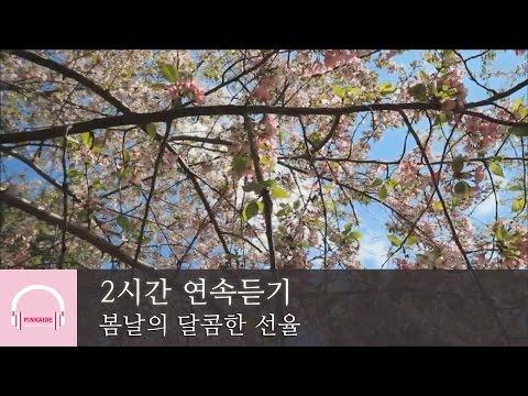 2시간 연속 듣기 | 봄날의 달콤한 선율 | 잔잔한 피아노곡 모음 | 릴렉스 피아노 | 4