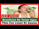 Extraordinarios Beneficios De Tomar Agua Tibia Con Limon En Ayunas Agua Con Limon En Ayunas