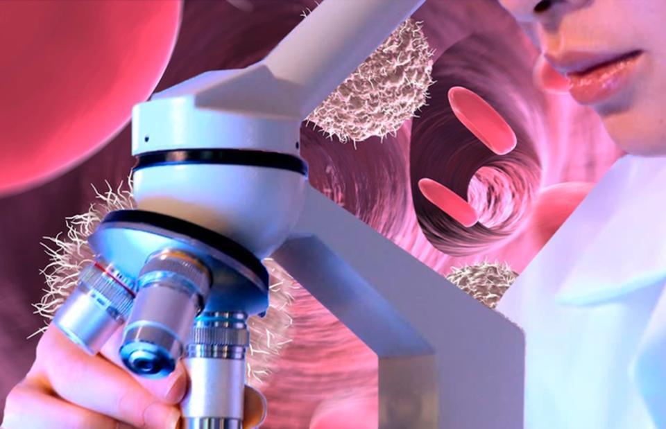 Какие методы лечения рака используют T-клетки?