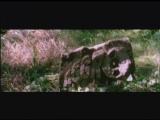 Aggro Berlin (Sido, B-Tight) - Steh Wieder Auf