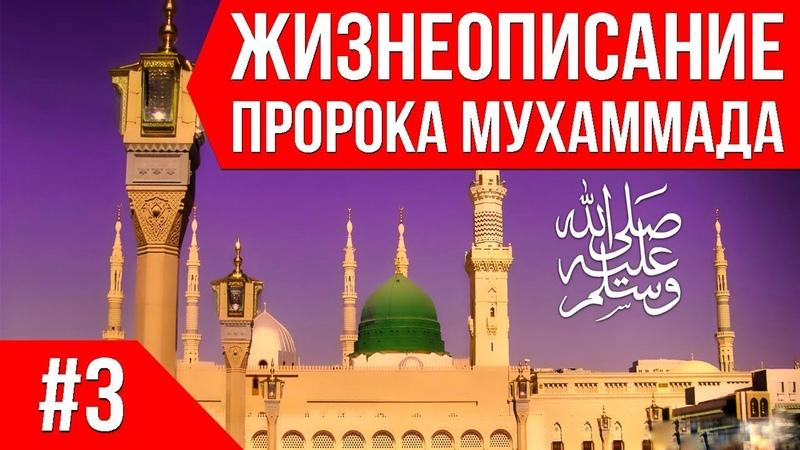 Пророк Мухаммад ﷺ. Жизнеописание. 03 Рождение Пророка Мухаммеда ﷺ