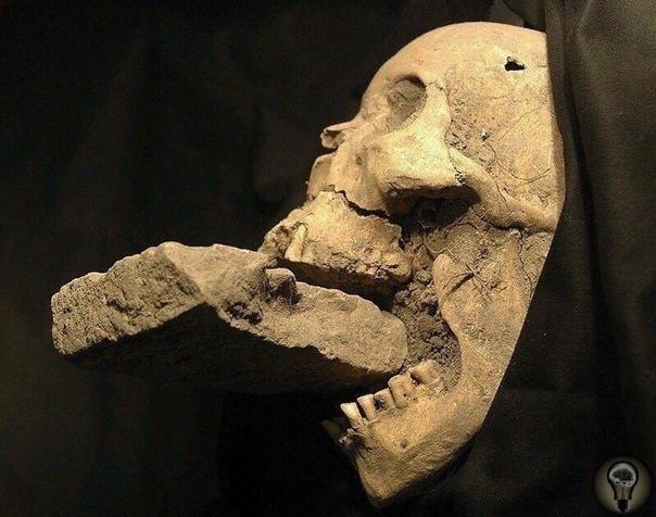 В конце 90-х годов ХХ века итальянские археологи раскапывали старое венецианское кладбище