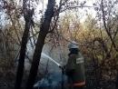 Пожар в Медногорске тушили вертолета «Ми-8» и самолета «ИЛ-78»