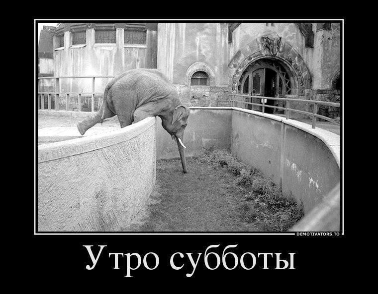 Фото минска до второй мировой войны целящийся лучник Дальше