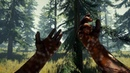 The Forest VR point