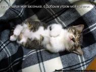 Доброе утро, любовь моя)))