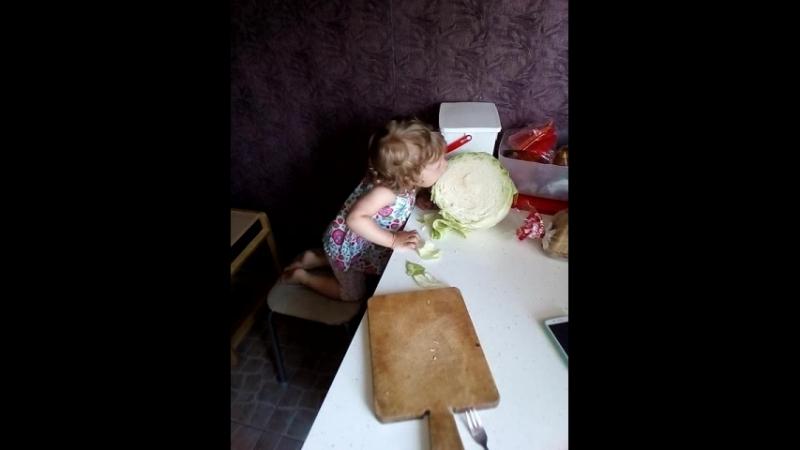 голод не тетка