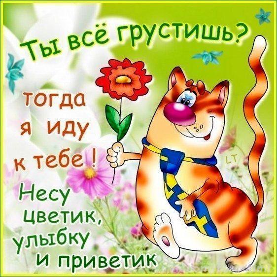 Фото открытки с животными