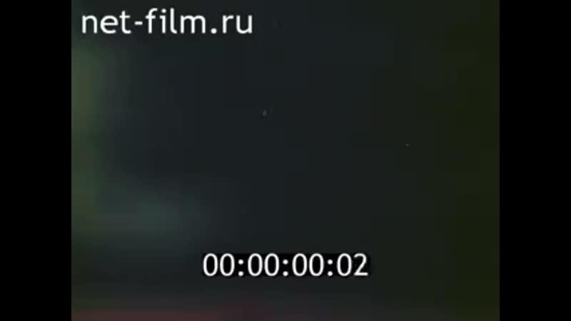 1984г село Дмитриевы Горы Колхоз Большевик Меленковский район Владимирская о mp4