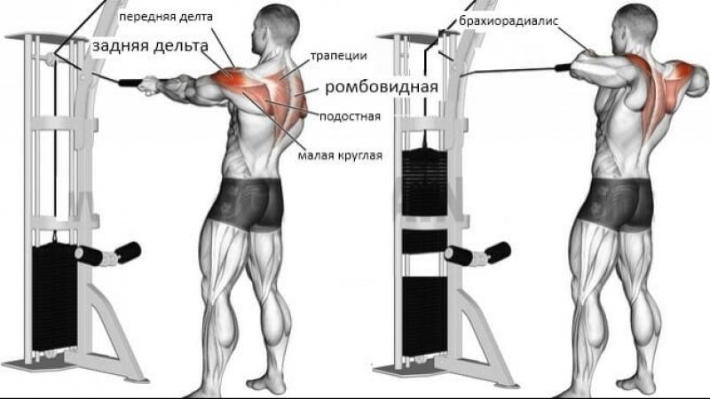 Упражнение на плечи: Тяга троса на задние дельты.
