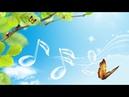 Музыка для снятия, стресса, усталости, депрессии. Music for relieving, stress, fatigue, depression.