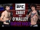 Забит Магомедшарипов vs Шон О'Мейли / А ЧТО ЕСЛИ? / UFC review