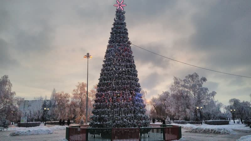 Зимняя сказка красивая изморозь, легкий снежок и новогодняя елка в парке Победы.
