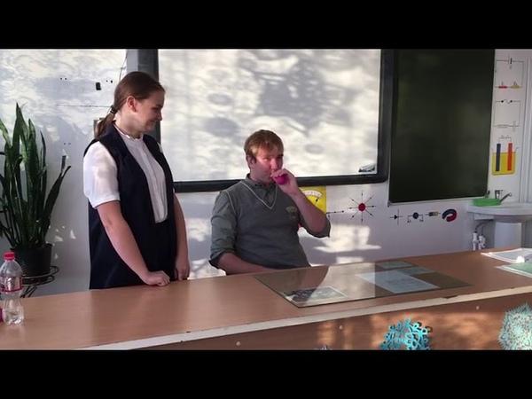 Эксперимент с шариком математика и физика в фокусе СОШ 9 Староминская 11 класс 2018 год