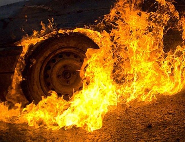 Под Таганрогом Renault Megane врезался в дерево и загорелся