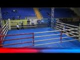 Чемпионат Московской области по боксу среди мужчин и женщин