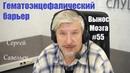 Гематоэнцефалический барьер Сергей Савельев Вынос мозга 55