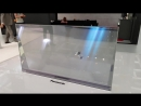 Panasonic transparent OLED TV Prototype at IFA 2017 [4K UHD 2160p]