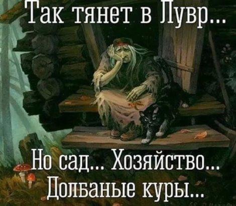 https://pp.userapi.com/c543103/v543103480/388bd/iF5Q75BBY2Q.jpg