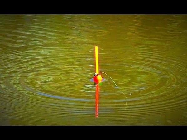Рыбалка на карася. Ловля на поплавочную удочку. Эксперимент: без прикормки.