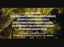 ВСЕРОССИЙСКИЙ КОНКУРС ИЗОБРАЗИТЕЛЬНОГО ИСКУССТВА ПОСВЯЩЁННЫЙ 100 ЛЕТИЮ ОБРАЗОВАНИЯ РЕСПУБЛИКИ БАШКОРТОСТАН