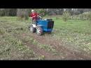 картофелекопалка и грабли в работе