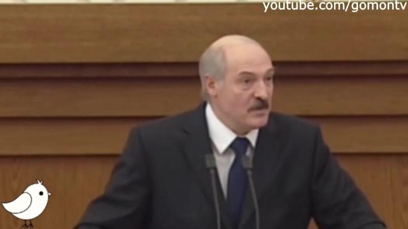 Лукашенко Ну зачем есть мясо с картошкой Правду говорит