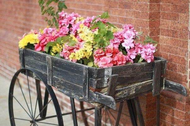И целая телега цветов... Идеи для красивого сада.