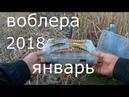 ЩУКА и ВОБЛЕР. Воблера 2018г. Январь.