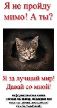 Анна Акимова, 26 июля 1986, Барнаул, id16251946