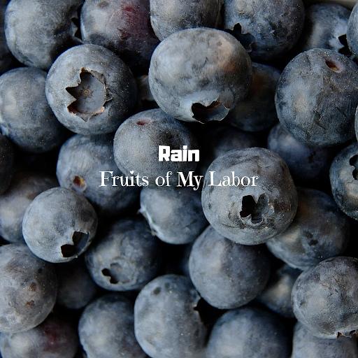 Rain альбом Fruits of My Labor