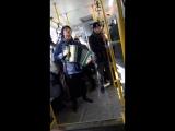 Пермяк с гармошкой поет в общественном транспорте