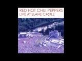 Red Hot Chili Peppers - Otherside / John Frusciante - I Feel Love - Live at Slane Castle, 2003