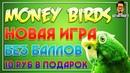 Обзор новой игры для заработка Money- БЕЗ БАЛЛОВ! Заработок на птицах / ArturProfit