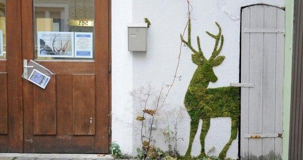 граффити экология люди могут воронеж все важные главные новости