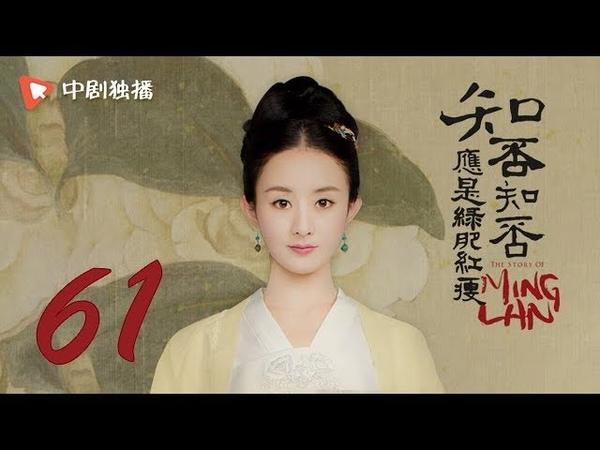 知否知否应是绿肥红瘦【未删减】61(赵丽颖、冯绍峰、朱一龙 领衔主演65