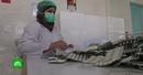 В роддоме на сирийско израильской границе нашли госпиталь для боевиков