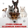 Группа помощи бездомным животным г.Нытва
